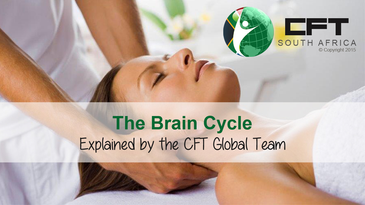 vid BrainCycle CFT